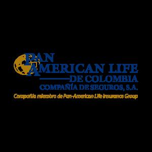 panamerican_Mesa de trabajo 1